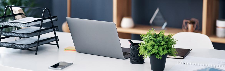 Laptop leżący obok rośliny